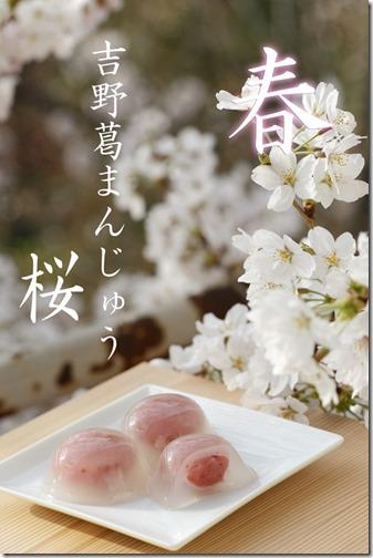 葛まんじゅう 桜